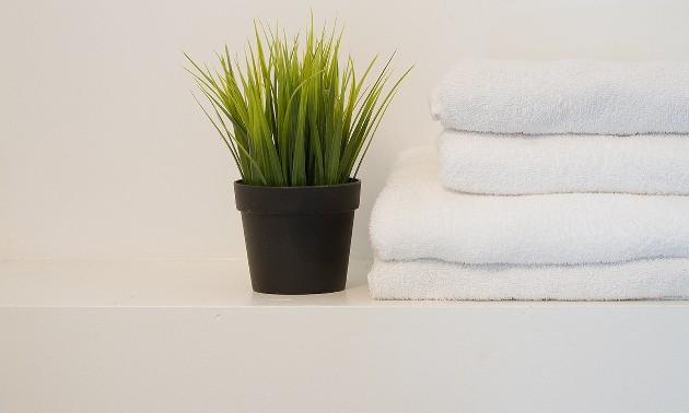 bathroom2ha1