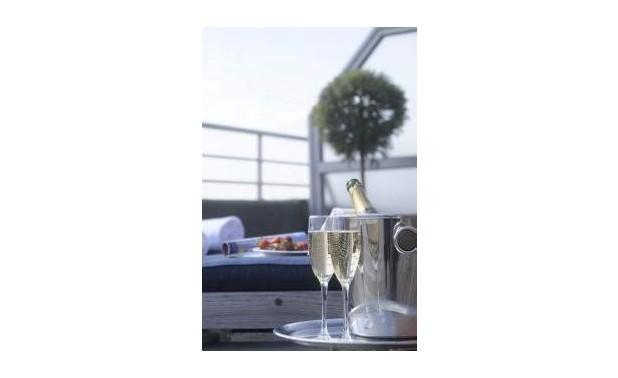 detail-zonneterras-champagne_lr