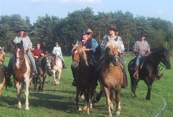 paarden3ws1
