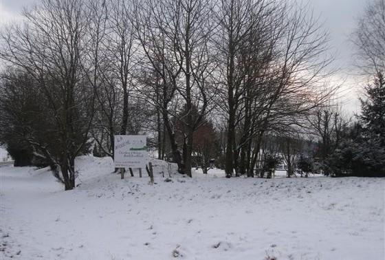 winter3ln
