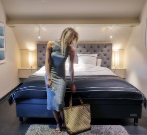 Hotel 'T Vier Emmershof - Lokeren